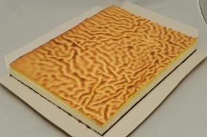 "TC-013 ""Tiger Skill"" Lemon Cream Cheese Mousse Cake 虎紋檸檬芝士慕思蛋糕"